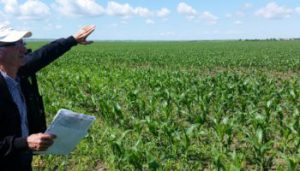 пољопривредна инспекција